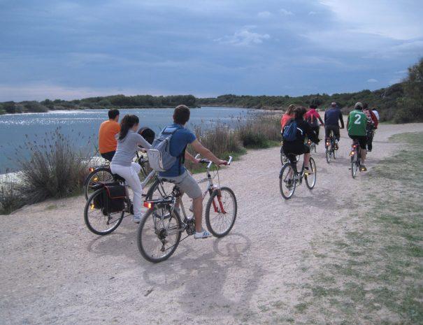 ruta-bicicletas